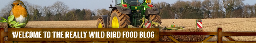 Really Wild Bird Food Co. Blog