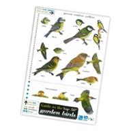 wild bird shop