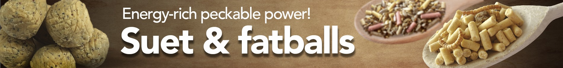 Suet & Fat Balls