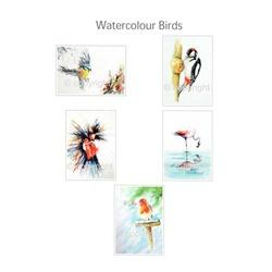 5 Bird Gift Cards