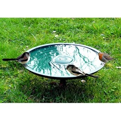 Anywhere Bird Bath