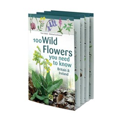 100 Wild Flowers You Need to Know