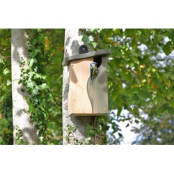 Simon King Curve Cavity Nest Box