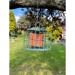 Nuttery Oval Caged Feeder With 4 Free Berry Suet Cakes - AUTUMN OFFER!