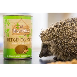Brambles Meaty Hedgehog Food