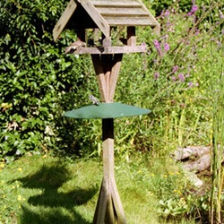 Bird Table Squirrel Baffle