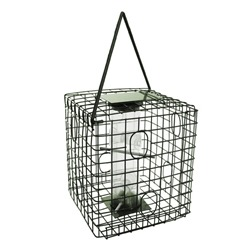 Square Caged Seed Feeder