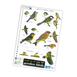 The Guide to the 'top 50' Garden Birds