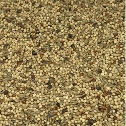 Budgerigar Supreme Seed Mix
