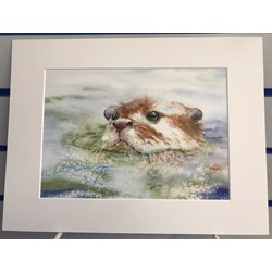 Otter Taking A Dip - Watercolour Print