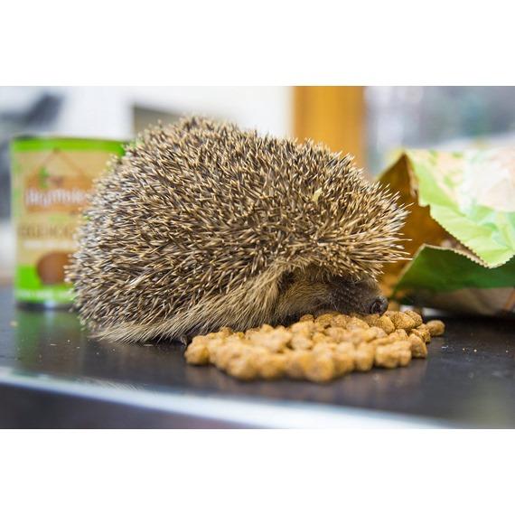 Brambles Crunchy Hedgehog Food