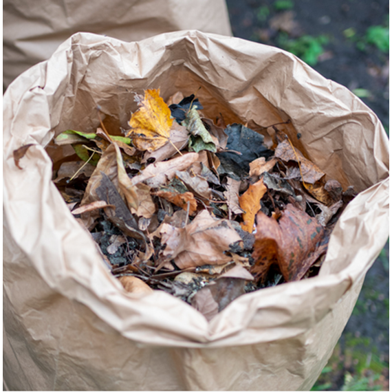 Compostable Garden Waste Bags - Packs of 5