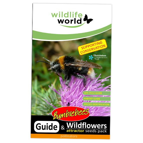 Wildflower Attractor Pack - Bumble Bees