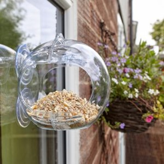 Globe Window Feeder
