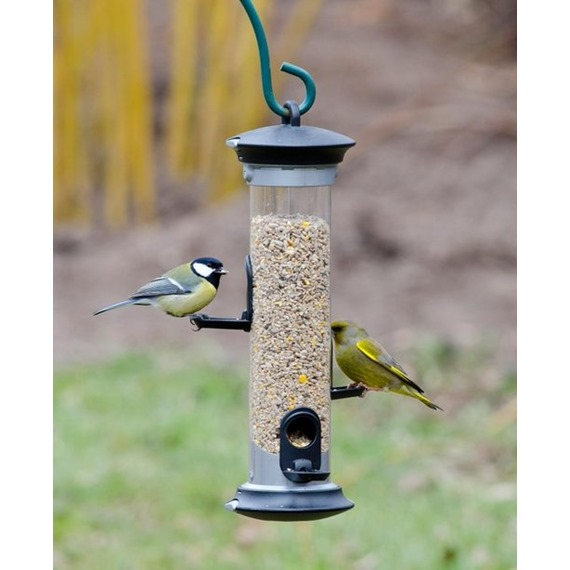Apollo Seed Feeder