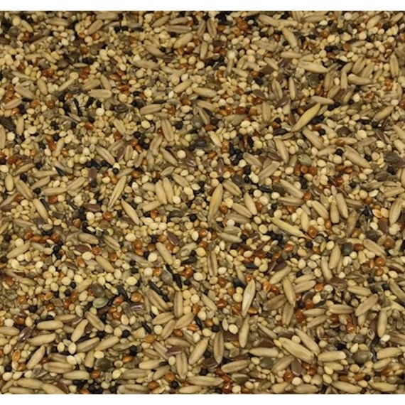 Budgerigar Tonic Seed Mix