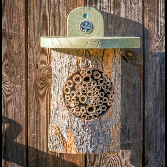 Natural Log Bee Home