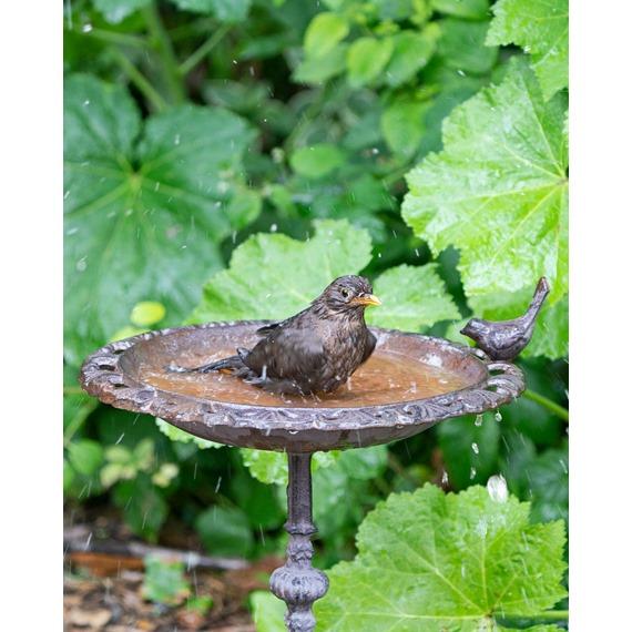 Old Iron™ Classic Bird Bath