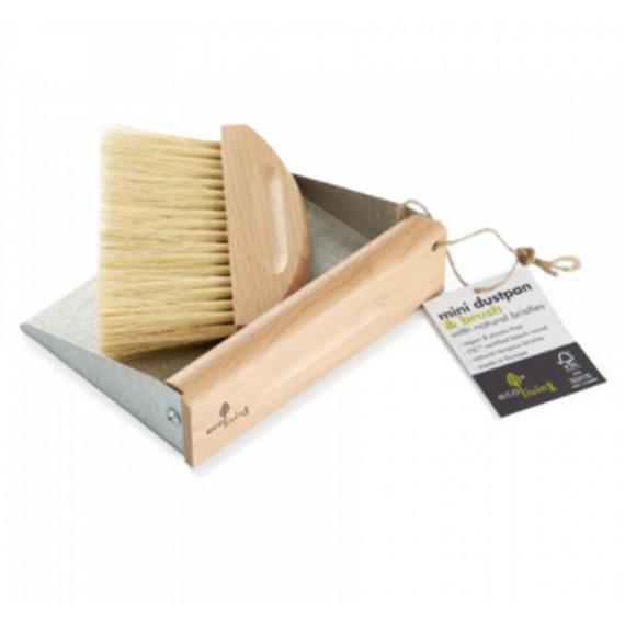 Mini Dustpan and Brush Set