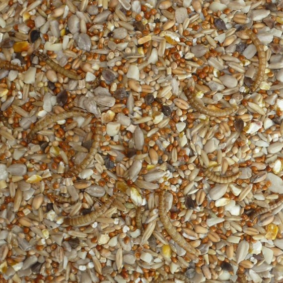 Sparrow Seed Mix