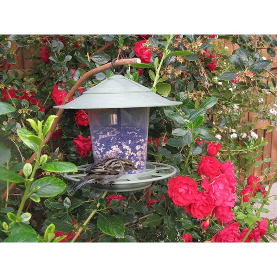 Eco Beacon Bird Seed Feeder
