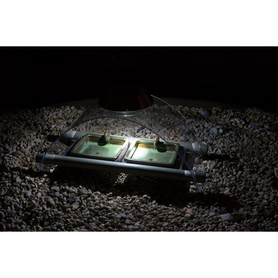 Solar Night Feeder designed by Simon King