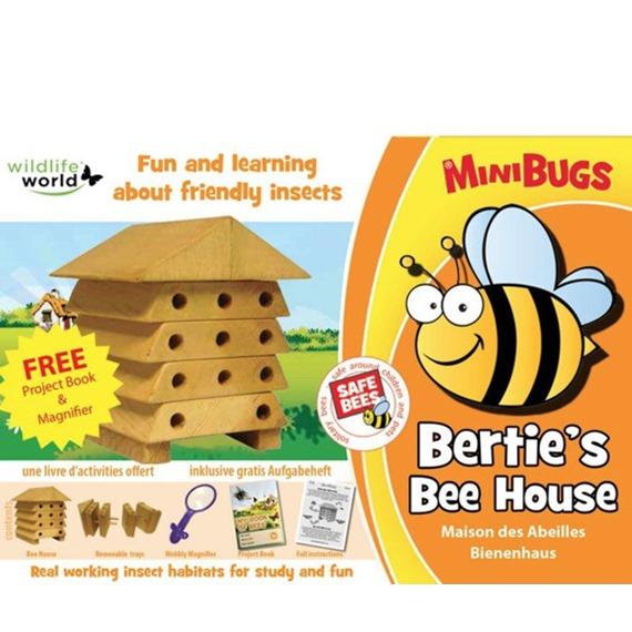 Bertie's Mini Bees House