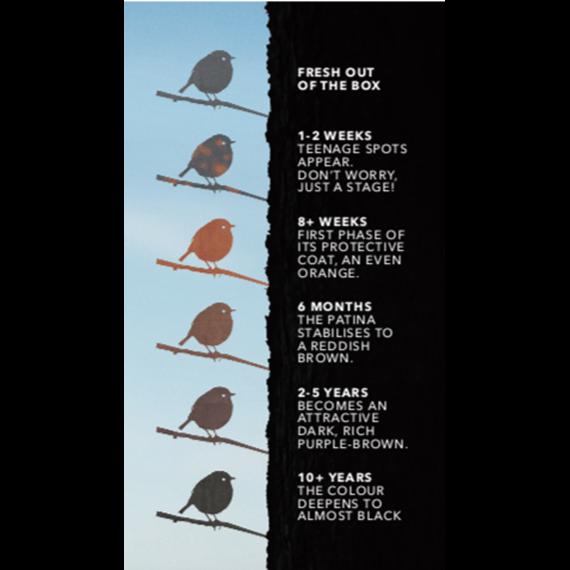 Metal Bird - Great Spotted Woodpecker