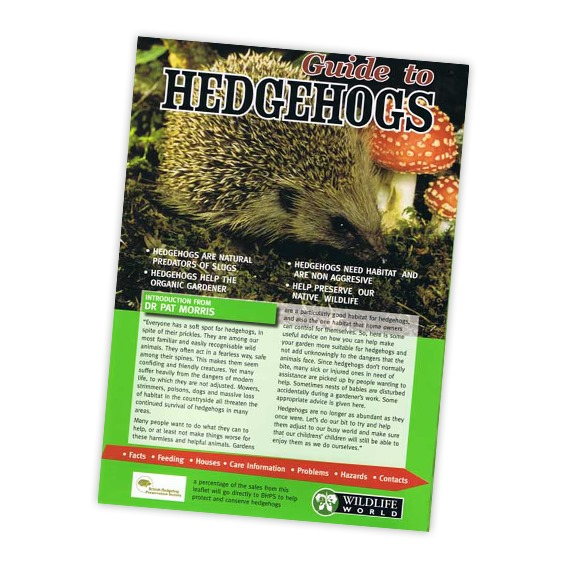 Field Guide to Hedgehogs