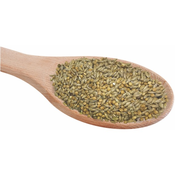 Budgerigar 50:50 Seed Mix