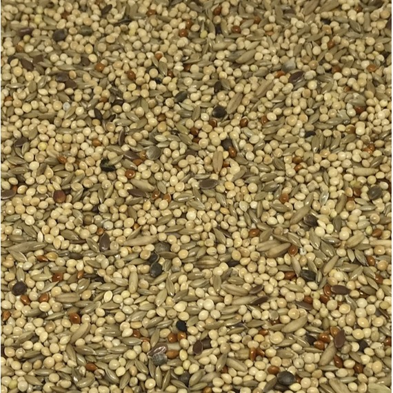 Budgerigar Supreme Seed Mix