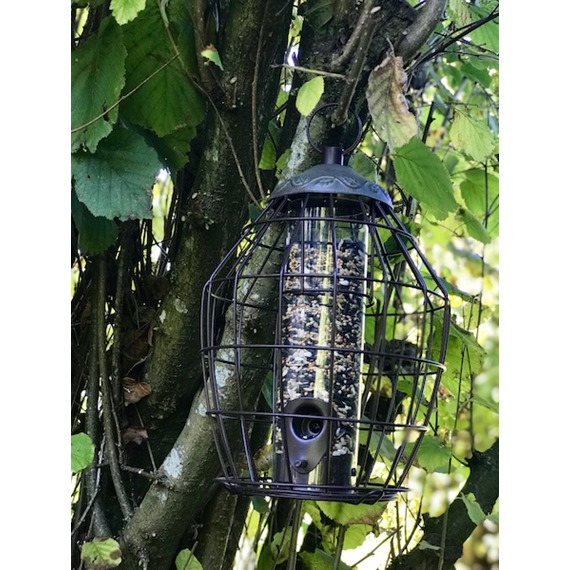 Secret Garden Squirrel Proof Seed Feeder