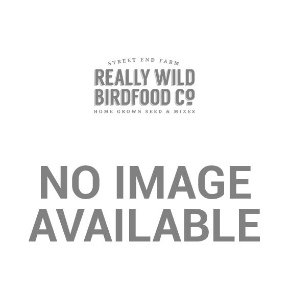 Ring-Pull Click™ Metal Niger Seed Feeders
