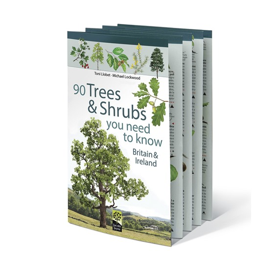 90 Trees and Shrubs You Need to Know