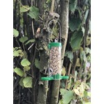 Get Set Go* Seed Feeder