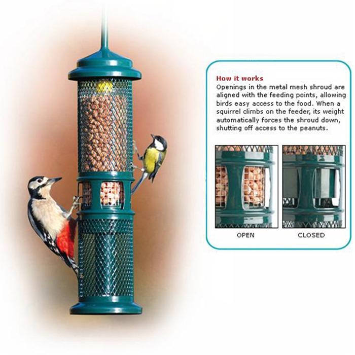tips ssf index squirrels hg keep feeding food feeder bird seeds away summer birds from at