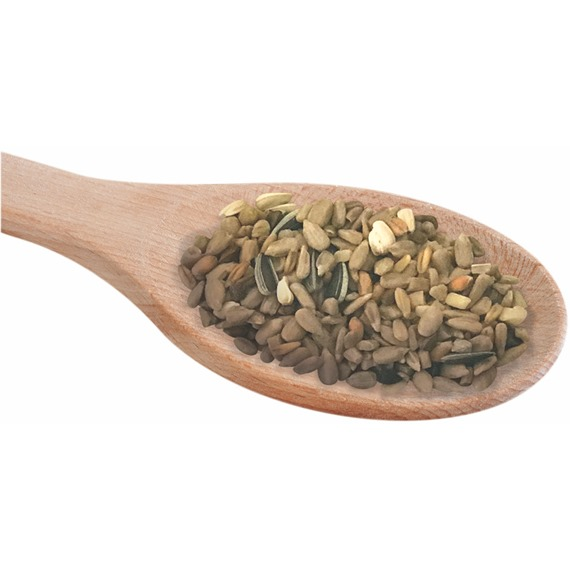 bird seed spoon