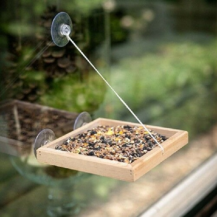 bird swing shelf