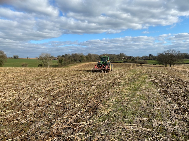 Preparing the field for sowing