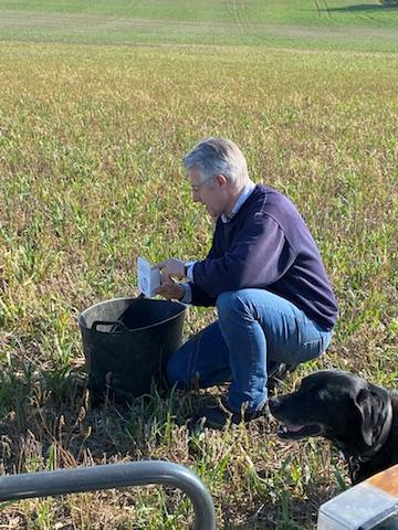 Sampling soil for analysis